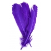 "Turkey Quill 12"" Purple"